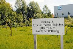 """Schild """"Brautpaare die in Altenwerder heiraten, pflanzen hier Bäume der Hoffnung. Wiese mit Apfelbäumen - im Hintergrund ein Lagergebäude an der Altenwerder Hauptstrasse."""