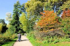 Strauch mit roten Herbstfrüchten am Rundweg um den Stadtparksee in Hamburg Winterhude - Herbstsonne und blauer Himmel.