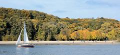 Elbufer bei Hamburg Wittenbergen im Herbst - Herbstsonne, blauer Himmel - prächtige Herbstfarben; Sandstrand am Elbufer Segelschiff in Fahrt.