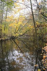 Herbst in Hamburg Grosser Bramfelder See