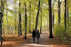 Herbstspaziergang am Sonntag in der Herbstsonne zwischen den Laubbäumen im Niendorfer Gehege - Herbstlaub liegt auf dem Boden.