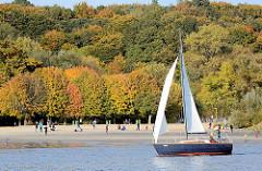 Goldener Oktober am Hamburger Elbstrand in Wittenbergen - die Bäume tragen herbstlich gefärbtes buntes Laub - Menschen in der Sonne am Sandstrand - Segelboot im Wind.
