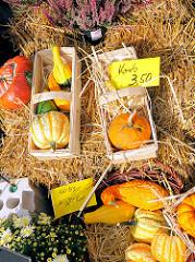 Herbstdekoration zum Verkauf - Kürbis in Holzkorb, dekoriert auf einem Strohballen - Bilder vom Landmarkt in Hamburg Bergedorf.