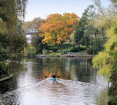 Herbstlicher Baum am Ufer des Alsterkanals in Hamburg Alsterdorf - ein Kanu fährt aus dem Skagerrak-Kanal in die Alster ein.