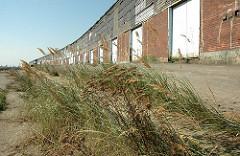 Stillgelegte Kaianlage am Versmannkai / Baakenhafen. Hohes Gras wächst an der Laderampe (2006)