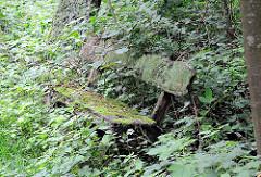 Ruhebank aus Holz - vermoderte Sitzgelegenheit am Rande des Wanderwegs durch das Hamburger Naturschutzgebiet Raakmoor - Grünpflanzen überwuchern die Holzbank, die mit Moos bedeckt ist.