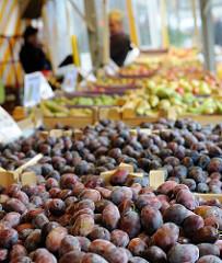 Wochenmarkt in Neugraben - Zwetschgen und anderes Obst auf dem Süderelbe Wochenmarkt.