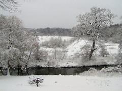 Winter am Lauf der Alster - schneebedeckte Wiesen.