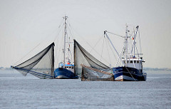 Fischfang auf der Elbe - Fischkutter mit Fangnetzen bei Hamburg.