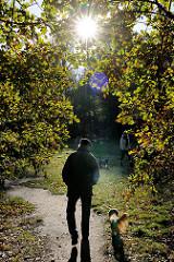 Spaziergänger mit Hund / Dackel unter den herbstlich gefärbten Blättern einer Eiche - die Sonne strahlt im Gegenlicht durch die Herbstblätter; Fotos aus dem Wald in Hamburg Niendorf.