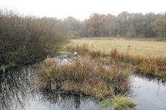 Teichwiesen in Hamburg Volksdorf - Naturschutzgebiet .