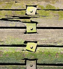 Alte Holzspundwand mit Moos  bewachsen - Bilder von der Geschichte des Hamburger Hafens.