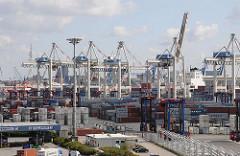 Hamburg Steinwerder - Containerlager und Containerbrücken - Terminal Tollerort.