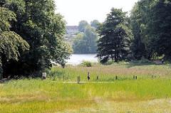 Fussgänger und Jogger auf der Holzbrücke über die Feuchtwiese im Harburger Stadtpark - im Hintergrund der Aussenmühlenteich.