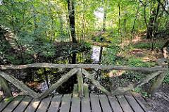 Holzbrücke über den Lauf der Wandse im Stellmoorer Tunneltal; naturbelassener Wasserlauf im Naturschutzgebiet.