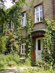 Hausfassade mit Efeu bewachsen - Wohngebäude im  selbstverwalteten Schröderstift.