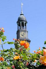 Turm der Hamburger St. Michaeliskirche - Wahrzeichen der Hansestadt Hamburg; blühende Rosen.