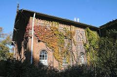 Stadtteile Hamburg - Wein an der Hauswand des Siemers Hof