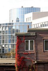 Architekturfotografie aus den Hamburger Stadtteilen - Büroarchitektur mit Glasfassade - Holzgebäude mit Wein bewachsen - Bilder aus Hamburg Alsterdorf.