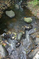 Fliessendes Wasser der Mellingbek - Steine im Bachlauf.