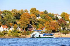 Hamburger Elbstrand in Hamburg Othmarschen - Herbst an der Elbe - Herbstbäume am Elbhang; voll besetzte Hafenfähre.