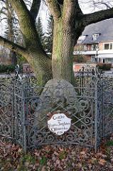Friedenseiche gestiftet vonr Frauen und Jungfrauen Othmarschens - Gedenkstein in der Liebermannstrasse - Fotos aus Hamburg Othmarschen.