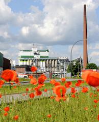 Blühender Mohn auf einer Wiese in Hamburg Wilhelmsburg - Fabrikschornstein und  Silogebäude.