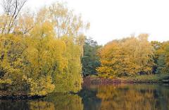 Grosser Bramfelder See herbstliche Bäume am Seeufer von Bramfeld