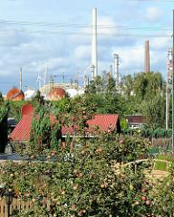 Kleingarten in Hamburg Heimfeld - Bostelbek Am Radeland - Schreberlauben und Apfelbäume mit Früchten - im Hintergrund Industrieanlagen und Schornsteine der Raffinerie in Harburg.