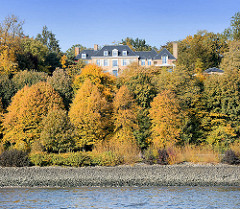 Herbstfärbung am Elbufer - Elbe und Uferbefestigung; Villa am Elbhang - Elbvorort.