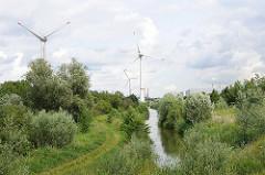 Wiesen und Graben mit Wasser hinter dem Gewerbegebiet von Hamburg Altenwerder - Windkraftanlagen in Hamburg - im Hintergrund die Containerbrücken vom Container Terminal Burchardkai.