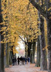 Kastanienallee mit herbstlich gefärbten Blättern im Hamburger Stadtpark - Spaziergänger.