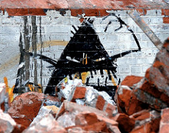 Abrissarbeiten am Baakenhafen, zertrümmerte Mauern / Ziegelsteine; ein petrophaga lorioti hat trotz ausreichender Mahlzeit schlechte Laune.