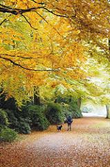 Fussweg mit Laub - Waldweg im Herbst am Kleinen Bramfelder See.