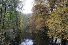 Hummelsbüttel am Alsterlauf Herbstbäume am Ufer der Alster.