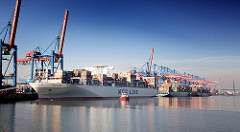 Blick zum HHLA Container Terminal Altenwerder - Containerschiffe liegen am Kai.