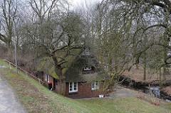 Haus mit Reetdach hinter dem Deich - Treppe mit Geländer zur Strasse - Neulaender Elbdeich