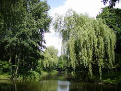 Hamburger Grünanlagen - Parks in Hamburg - Eimsbüttler Park am Weiher, Weiden am Wasser.