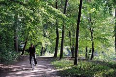 Bäume in Nienstedter Quellental - ein Fahrradfahrer fährt durch den Wald.