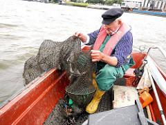Der Fischer holt die Reuse in die Jolle - Fischfang in der Billwerder Bucht, Hamburg Rothenburgsort.