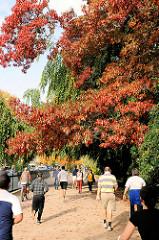 Herbst in Hamburg - Jogger und Spaziergänger an der Alster in Hamburg Rotherbaum - bunt gefärbte Herbstbäume.