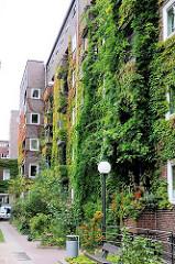 Mit Grünpflanzen bewachsene Fassade - Architektur in Hamburg Winterhude - Otto Stolten Hof, Jarrestadt.