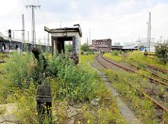 Wildkraut / Unkraut zwischen den Gleisen der Hamburger Hafenbahn - Bahngleise bei der Versmannstrasse in der Hafencity Hamburg.