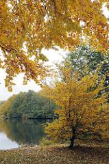 Prächtige Herbstbilder mit Herbstlaub vom See im Stadtteil Hamburg Bramfeld