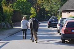 Bilder aus Hamurg Duvenstedt Im Ellernbusch - Pferd auf der Strasse.