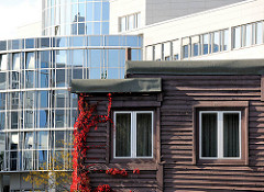 Holzfassade mit rotem Herbstwein bewachsen - Glasfassade eines Bürogebäudes in Hamburg Alsterdorf.