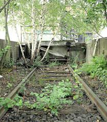Bahngleis der Güterbahn / Hafenbahn im Hamburger Oberhafen - das Gleis ist stillgelegt, der Prellbock zerfallen; Birken wachsen bei den Gleisen.