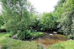 Lauf der Tarpenbek im Hamburger Stadtteil Niendorf - Wiese und Bäume am Ufer des Baches.