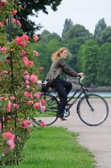 Rosensträucher an der Plantanenallee, Fahradfahrerin im Stadtpark Hamburgs.