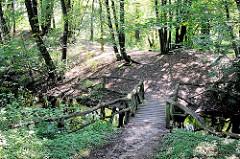 Aus Holzstämmen gefertigte Fussgängerbrücke über den Lauf der Wandse im Hamburger Naturschutzgebiet Stellmoorer Tunneltal.
